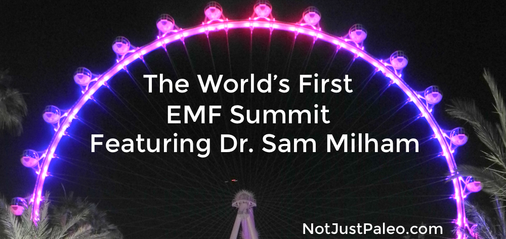 The World's First EMF Summit