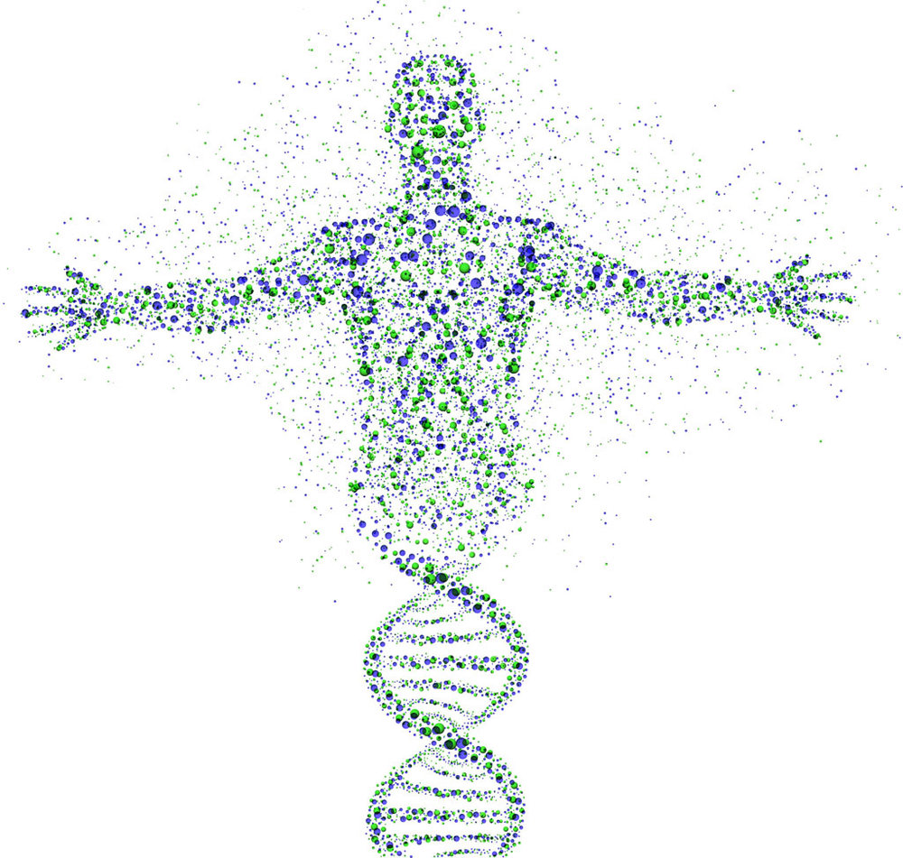 Genetic-Adam.jpg