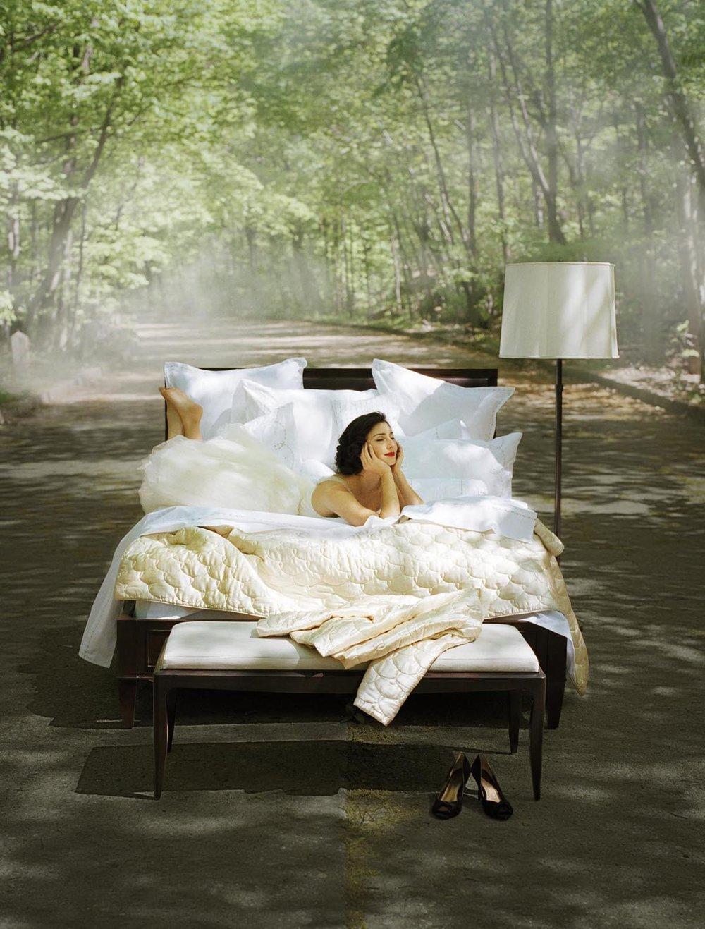 NatlAd_Dream2008_Bed-Lane.jpg