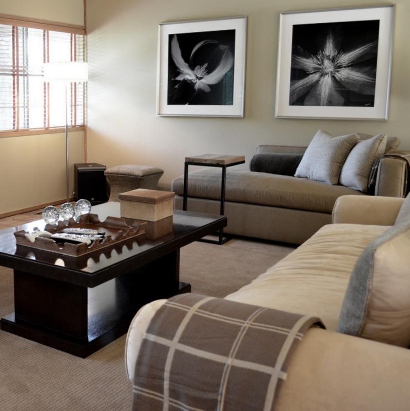 glen_johnston_photography_flora_living_room.jpg