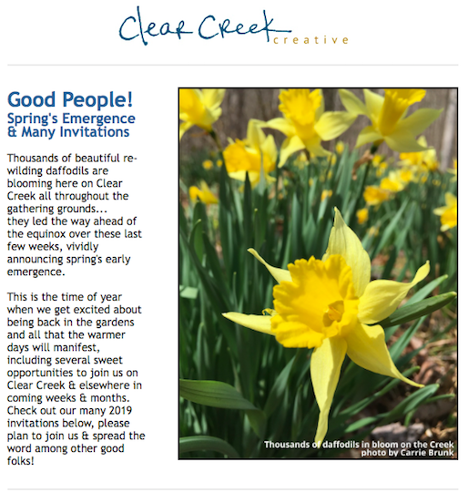 Spring Emergence & 2019 Invitations from Clear Creek Creative (produced by Carrie Brunk)