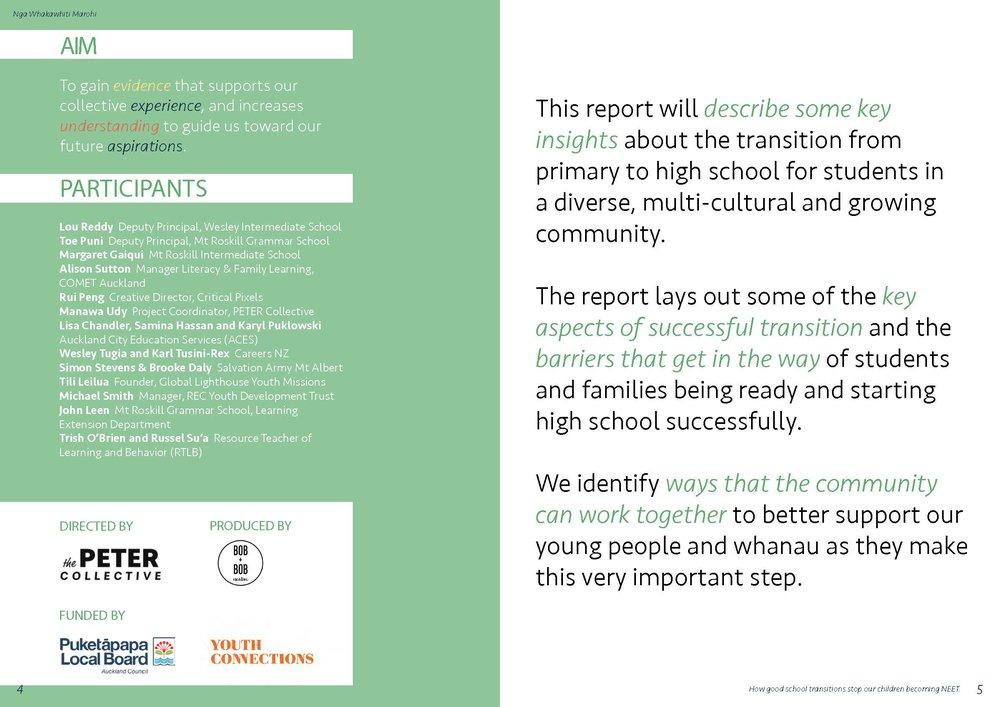 Nga Whakawhiti Marohi - Puketapapa Transitions Report_Page_03.jpg