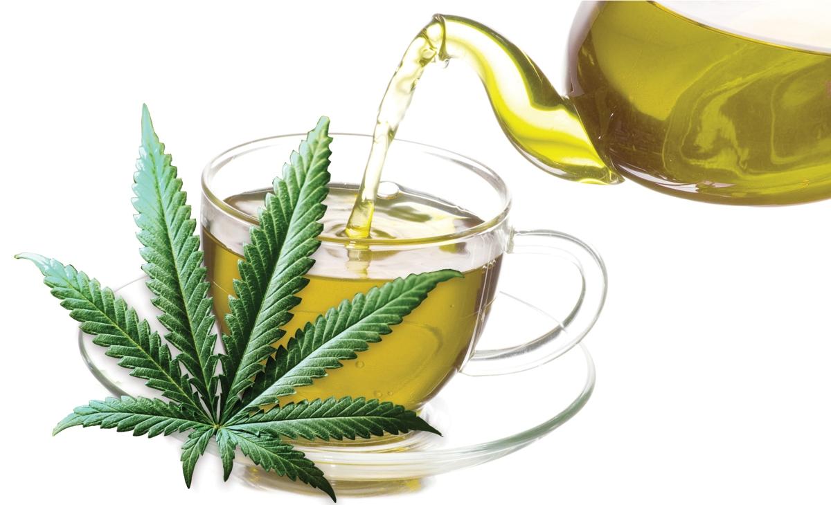 Reasons to Start Drinking Cannabis Tea