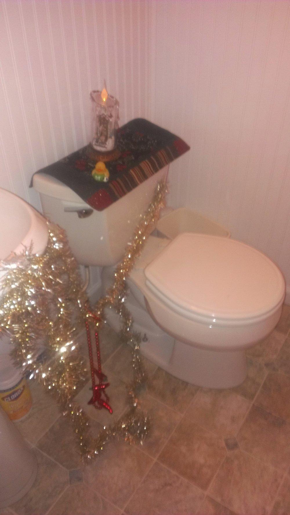 NYE toilet.jpg