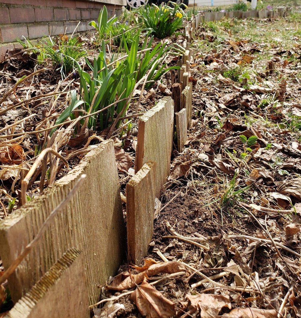 Refreshed garden border.