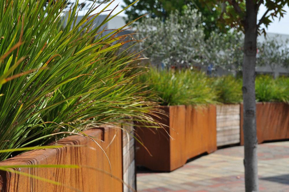 Landscape Architecture & Design    Find Out More