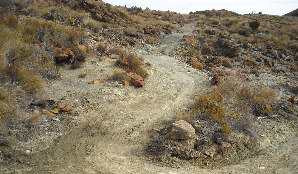 Dun Mountain
