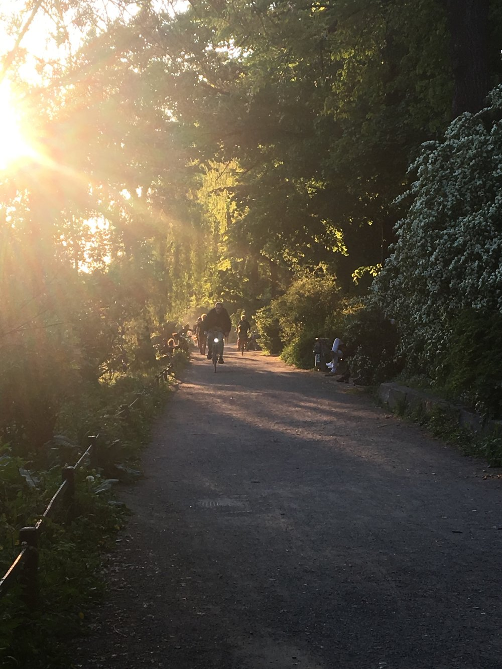Path by the Landwehrkanal at sunset, May 2017