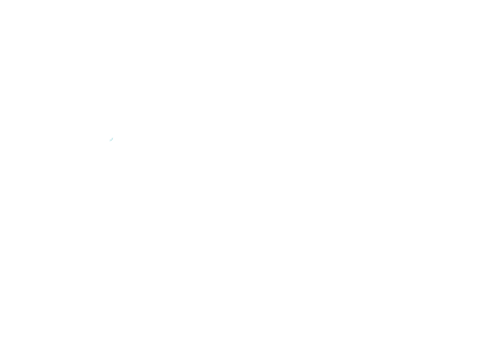 DAVEY & THE MIDNIGHTS