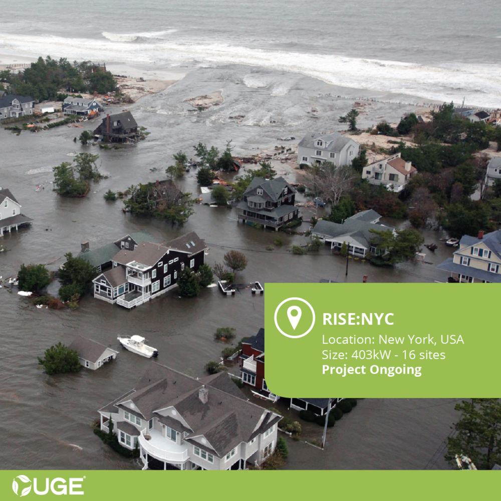 Rise-NYC Case Study.png