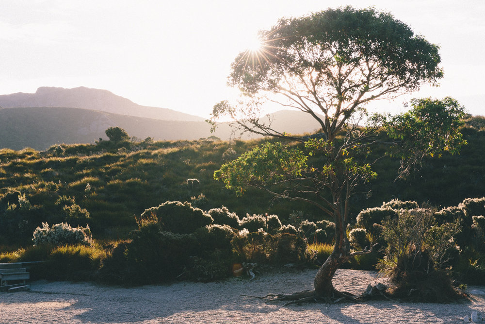 Melissa_Findley-Broadsheet_Tasmania-WEB-2