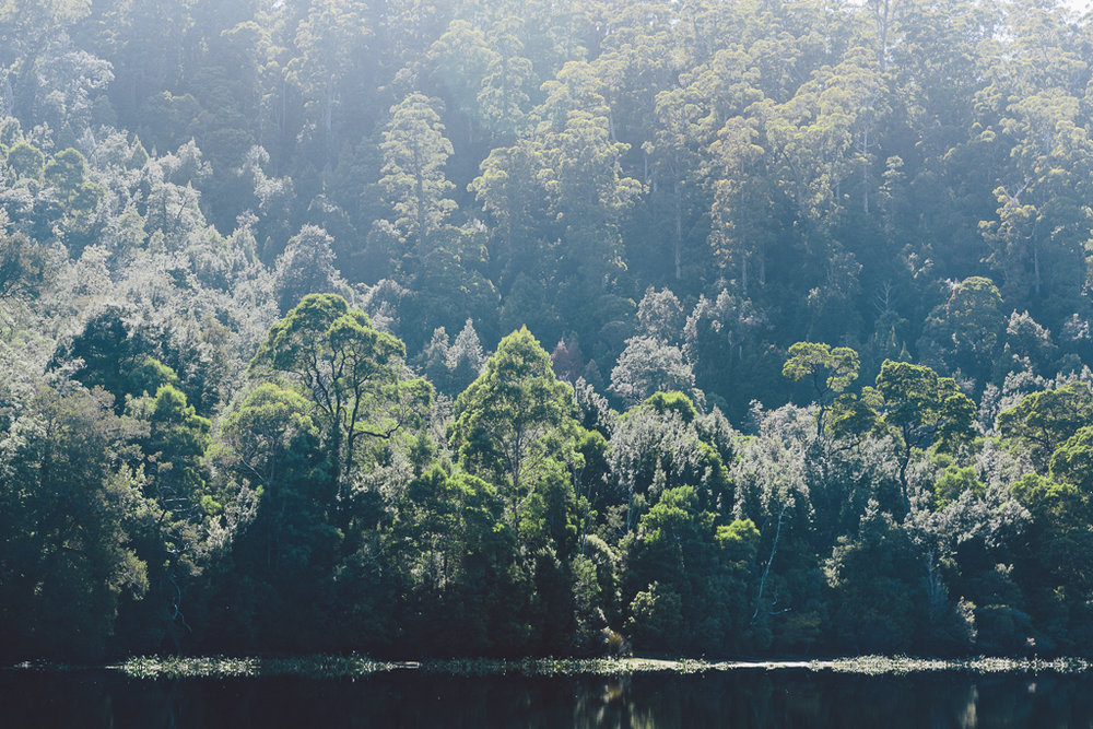 Melissa_Findley-Broadsheet_Tasmania-WEB-36