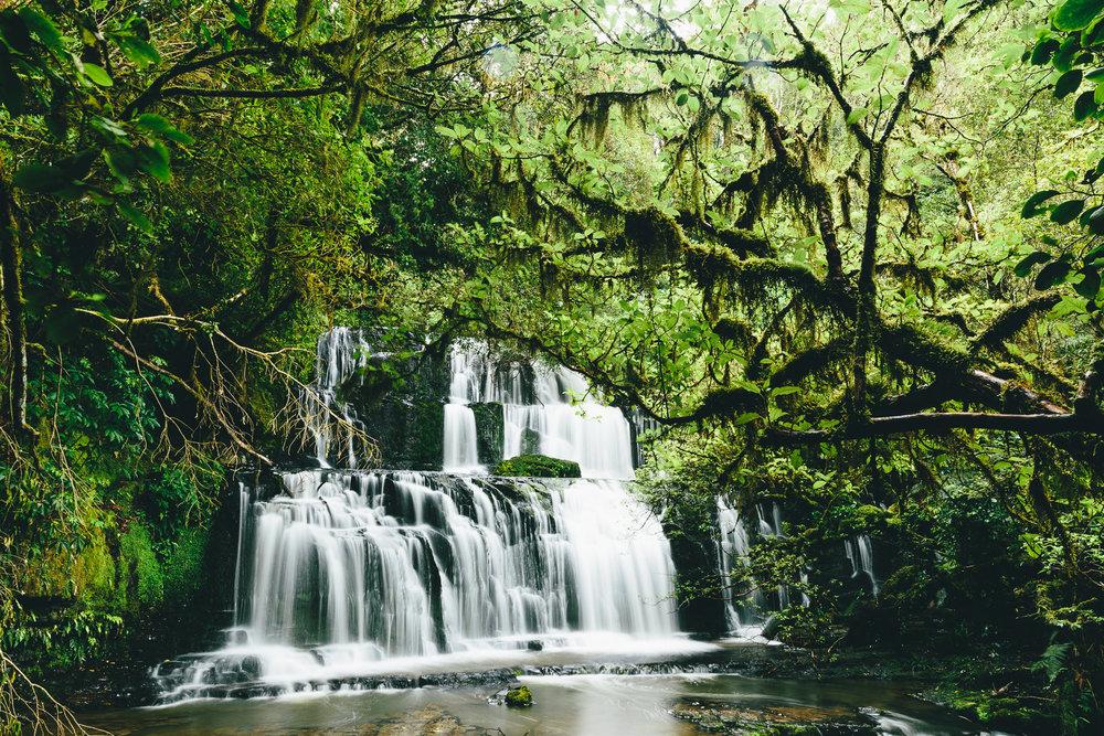 Melissa_Findley-NZ-MFHomepage2