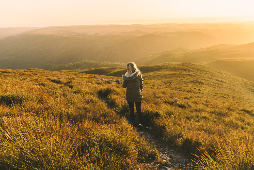 Melissa_Findley-NZ-MFHomepage6-7
