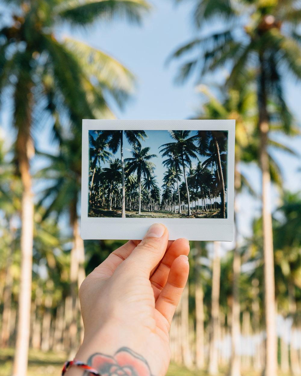 Melissa_Findley-Vanuatu-MFBlog-28