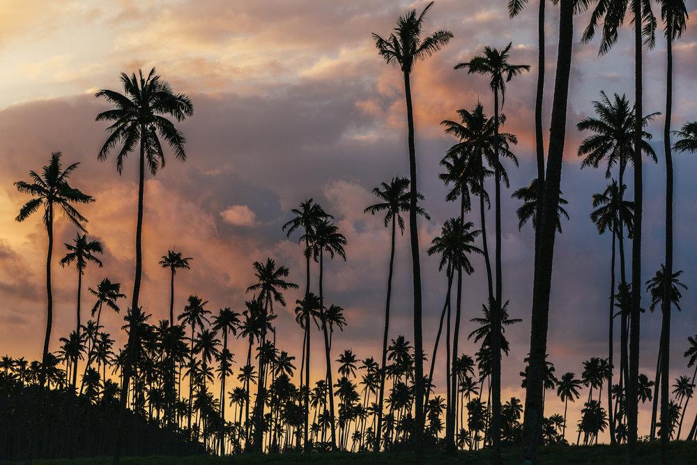 Melissa_Findley-Vanuatu-MFBlog-30