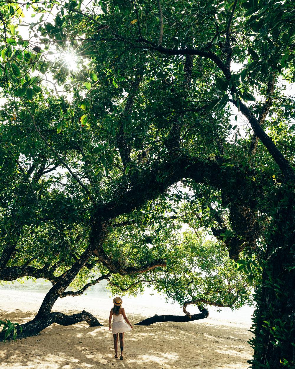 Melissa_Findley-Vanuatu-MFBlog-54