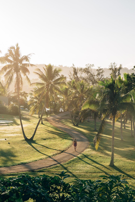Melissa_Findley-Vanuatu-MFBlog-97