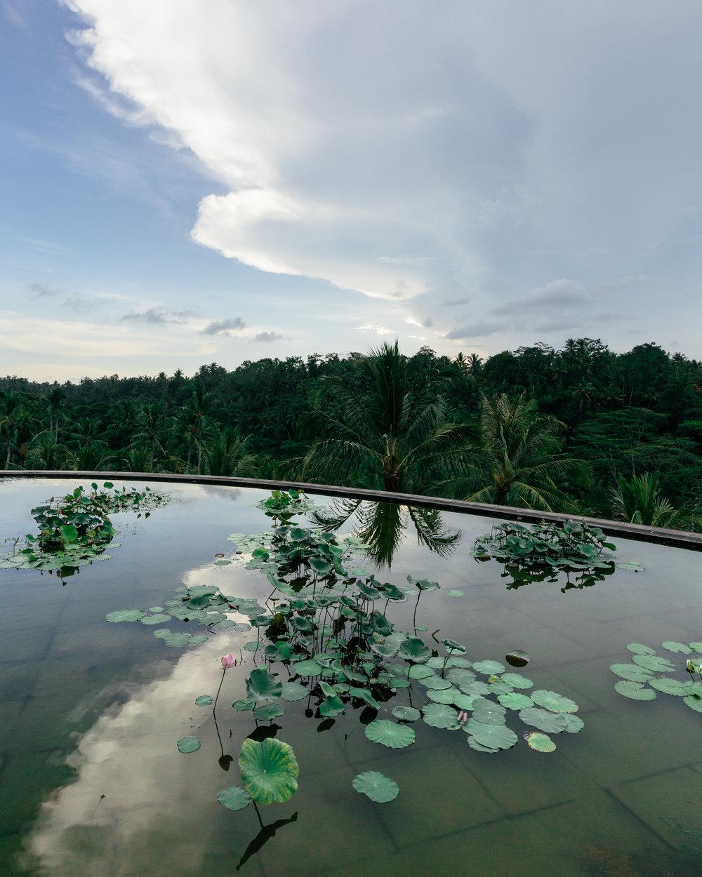 Melissa_Findley-Bali-Blog-39