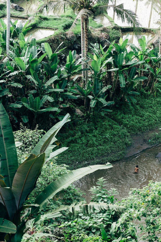 Melissa_Findley-Bali-Blog-48