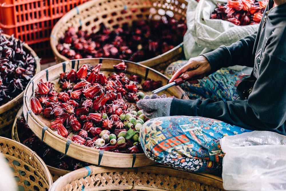 Melissa_Findley-Bali-Blog-58