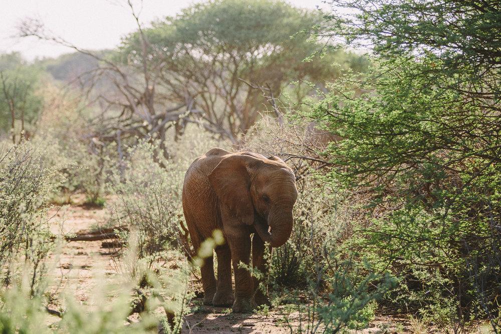 Melissa_Findley-SouthAfrica-Blog-25.jpg