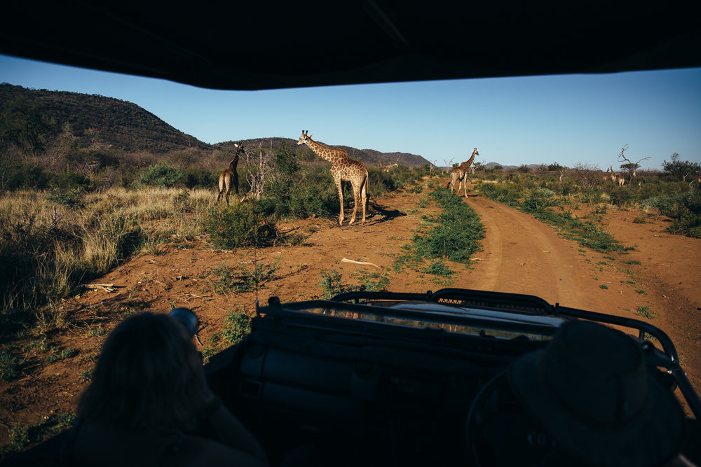 Melissa_Findley-SouthAfrica-Blog-81.jpg