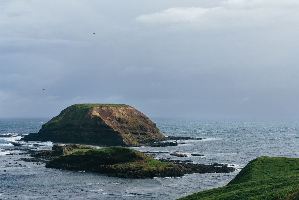 Melissa-Findley-Phillip-Island-15.jpg