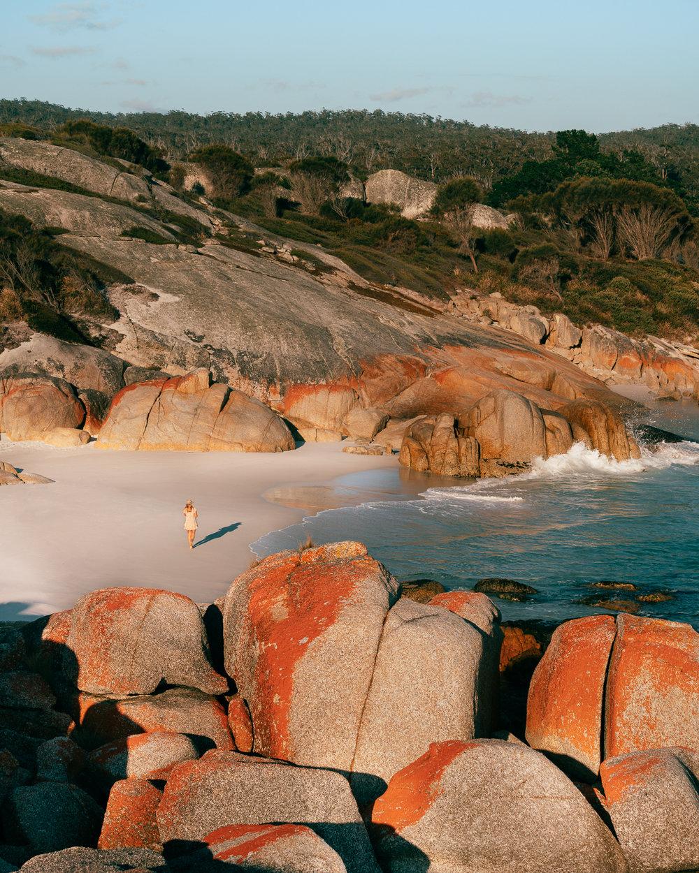 Melissa_Findley-Tasmania-Spring'18-Blog--04.jpg