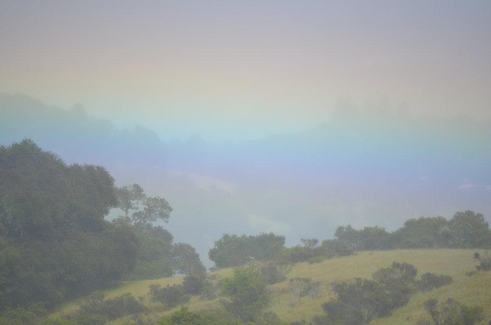 10-Rainbow-1.jpg