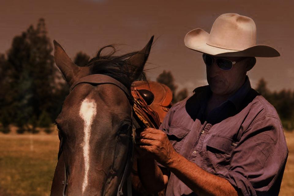 Horses started under saddle