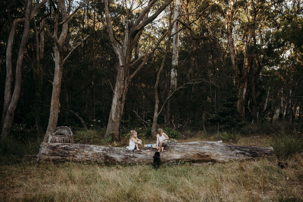 children sitting on fallen tree having lollies