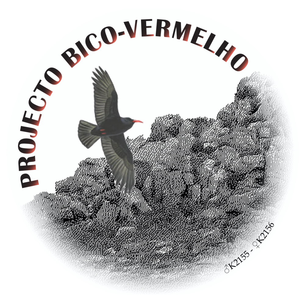 LogoGBVHD2.png