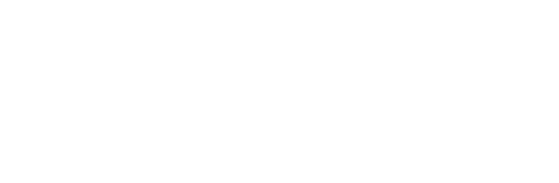 Mindful Bizness