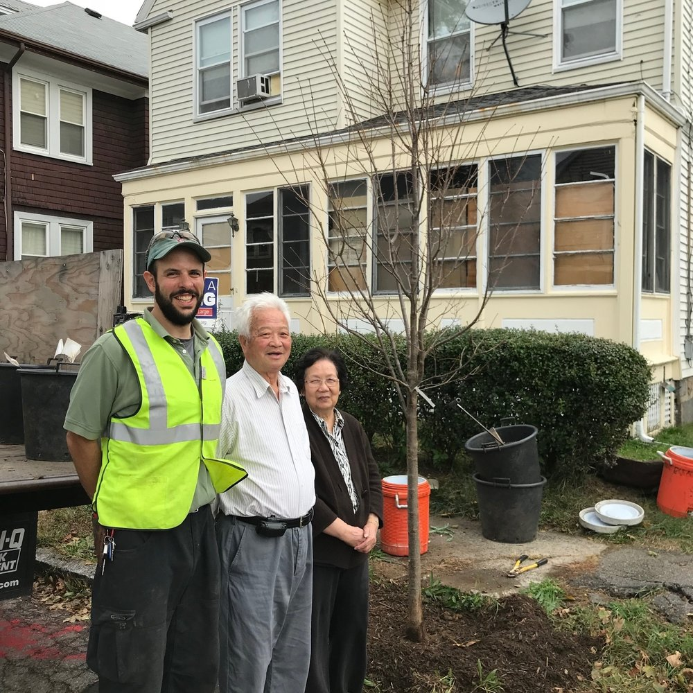 Greening the Gateway Cities   QARI partners with DCR and the City of Quincy to plant trees. This program reduces household heating and cooling energy use by increasing tree canopy cover in urban residential areas.