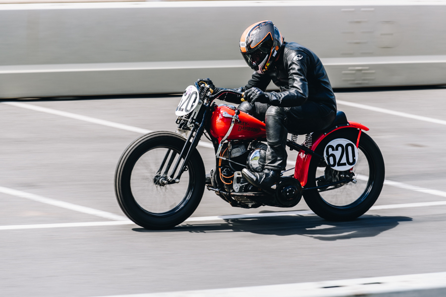 geelong_revival_2018-27.jpg