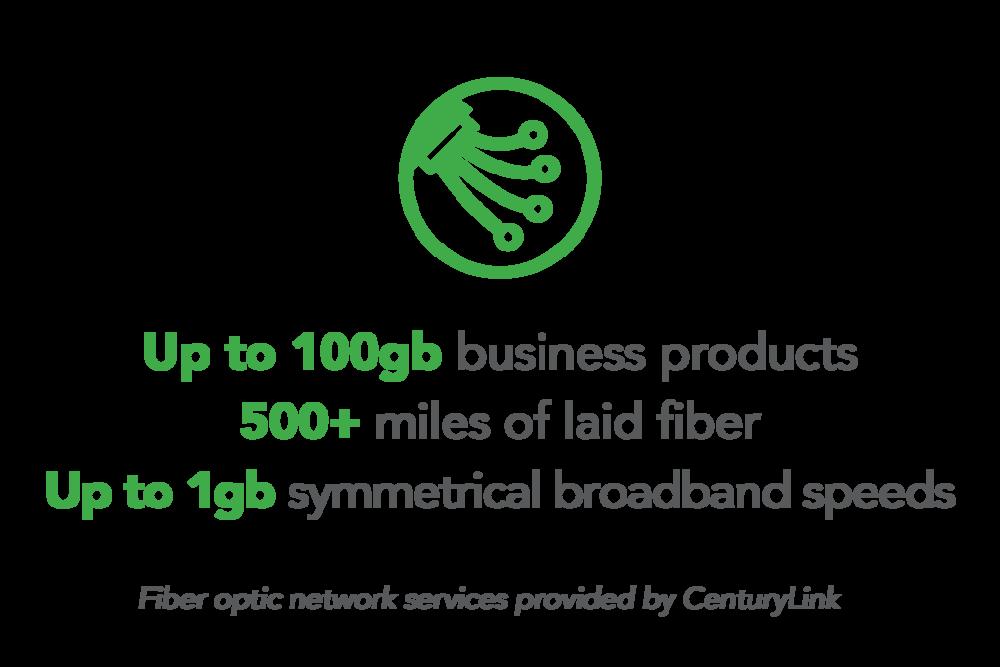 Infrastructure-FiberNetwork.png