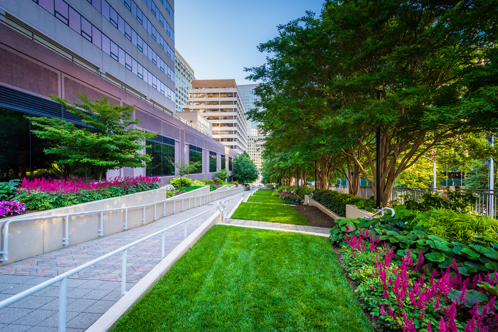 office-landscaping-company.jpg
