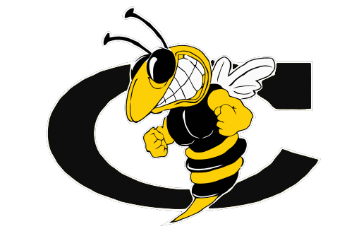 School_Hornet_vectorized.jpg