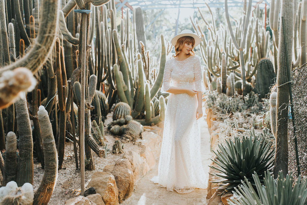 cactussneak(15of1).jpg