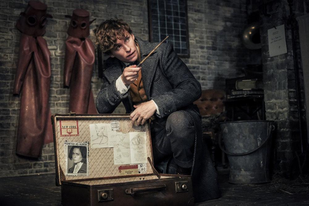 Newt Scamander (Eddie Redmayne) and his magic beast-capturing briefcase
