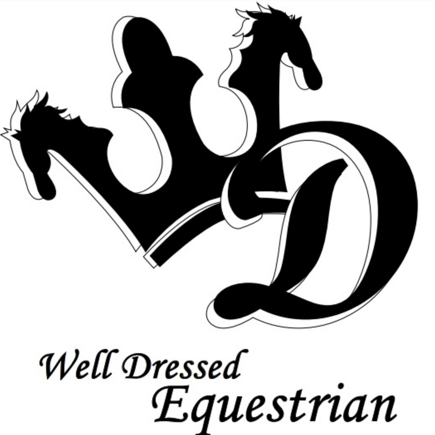 Well Dressed Equestrian