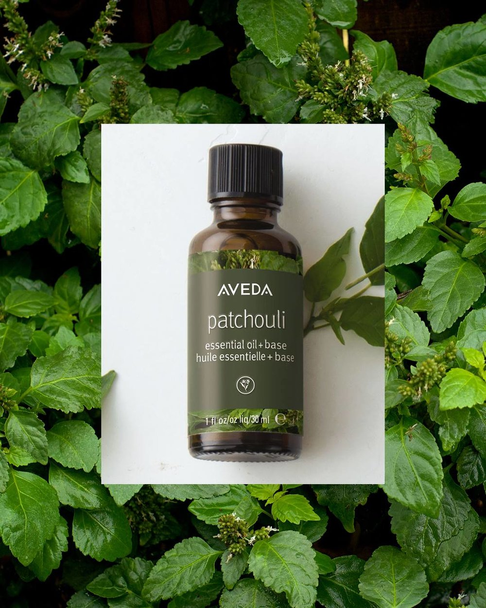 patchouli aveda essential oil.jpg