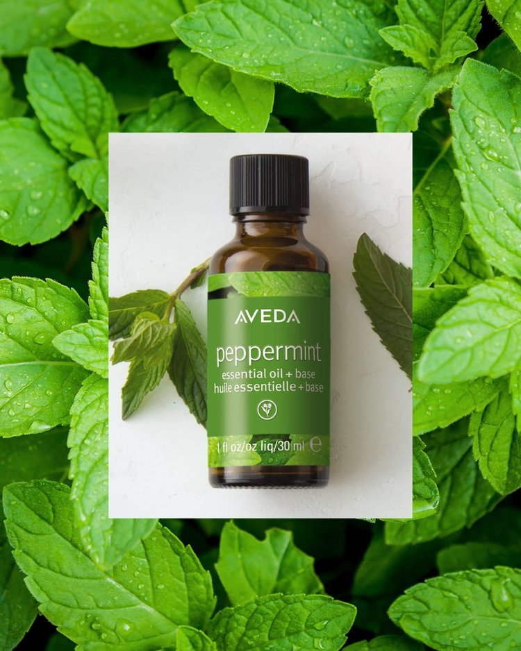 peppermint+aveda+essential+oil.jpg