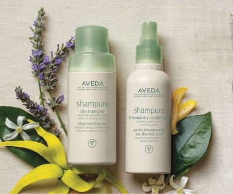 aveda dry shampoo conditioner.jpg