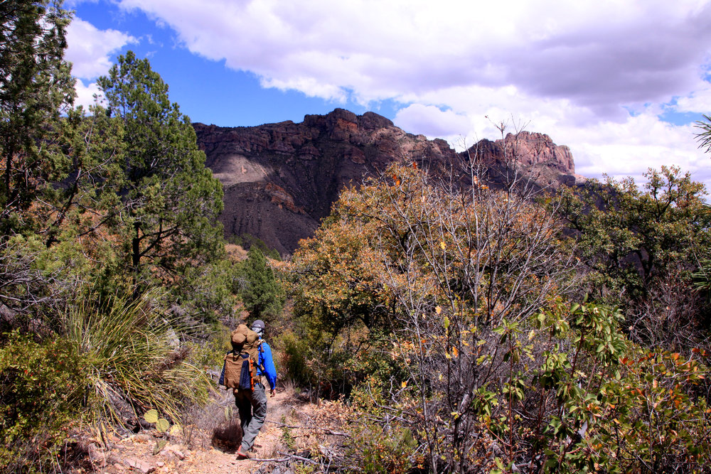 Catoma Staff on a Research & Development trip to   Big Bend National Park