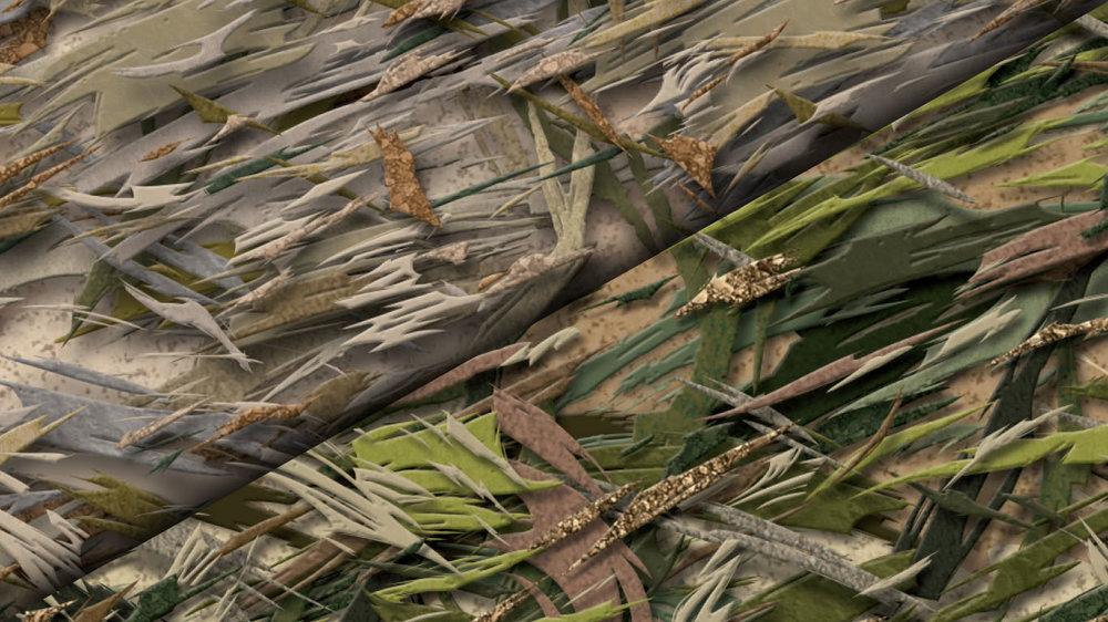 Brushland / Forest Floor -