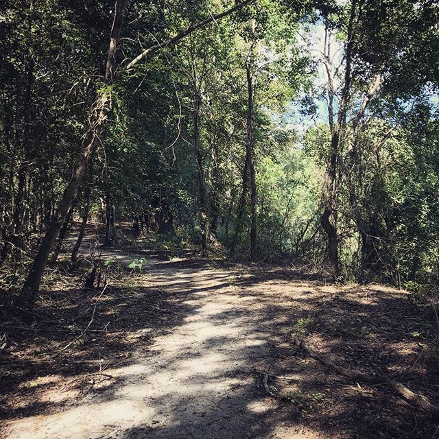"""Of all the paths you take in life, make sure a few of them are dirt."" -John Muir #outdoors #trailhiking #adventure #getoutside #nature #path #lifelessons #johnmuir #montgomeryal #parksandrec #AlabamaOutdoors"