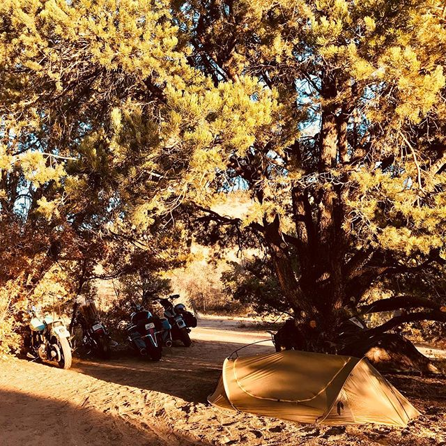 The Badger 1-Person shelter is perfect for a motorcycle road trip. Spotted in Zion National Park in Utah. (📷 by Jerod S.) #motorcyclecamping #motocamping #roadtrip #zionnationalpark #Utah #adventurerider #lovetheunknown #motolife