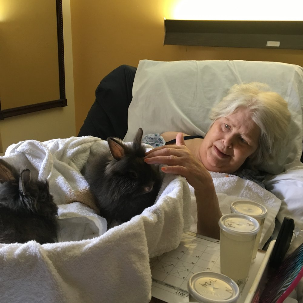 Before Bible Study at Hill Creek, the rabbits & I visited Sharon in her room. She lovedthe new rabbits - just like she loved all the animals. - - Peter